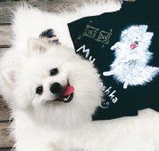 Мария Вэй собака Тотоша